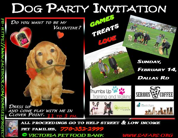 valentines dog party poster